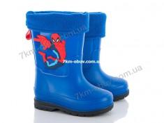 купить Class-Shoes J06 оптом