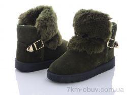 купить Class Shoes 1833 green оптом