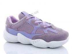 купить Старго 681-1 violet оптом