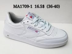 купить CLASSICA MA1709-1 оптом